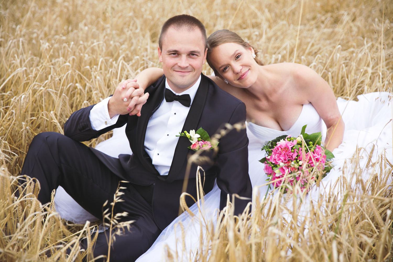 svatební focení novomanželů v poli